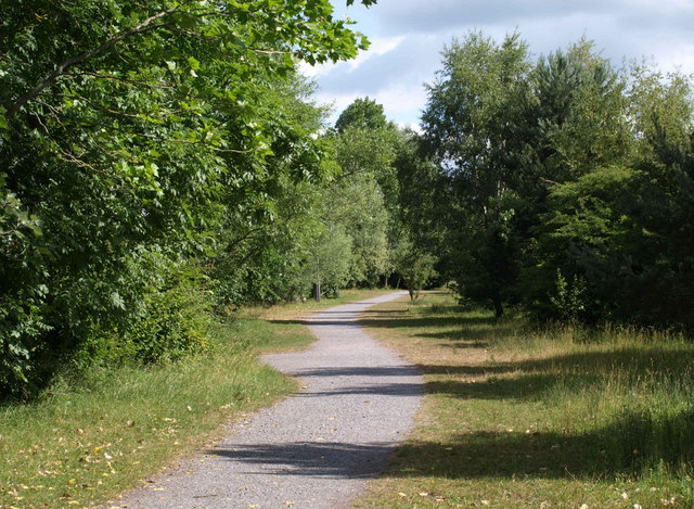 Cycle track, Aller Brook Local Nature Reserve