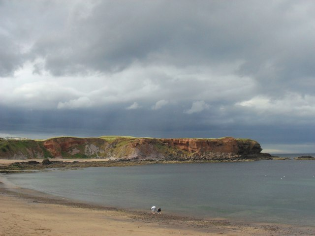 Looking out over the bay at Eyemouth
