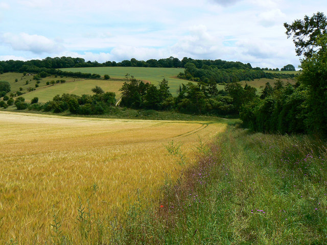 Further down the footpath to Long Copse, near Preston