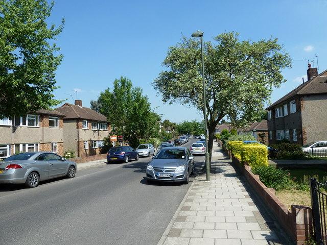 Summer in Shepperton Road