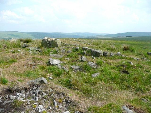 Shaw Stone