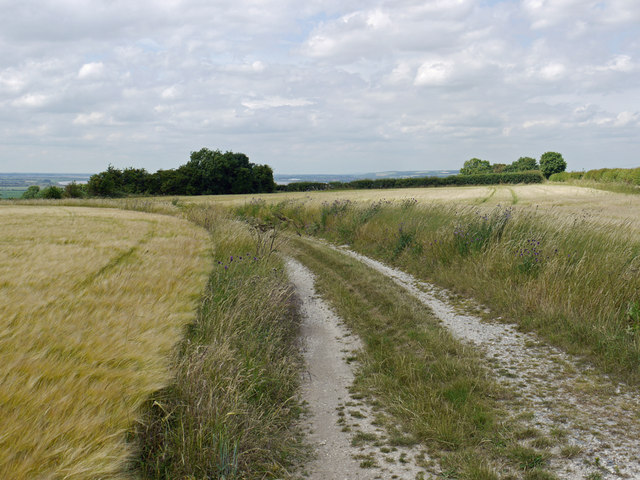 The Track to the Old Quarry