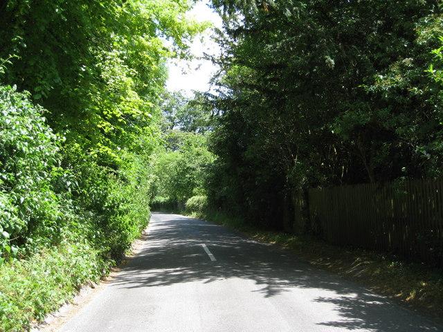 Pilgrims Lane
