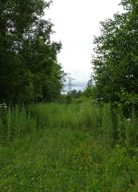 Pylon and rough ground at the northern edge of Rous's Covert