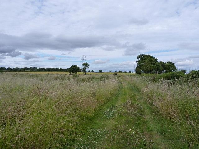 Farm track near Burnhill Green
