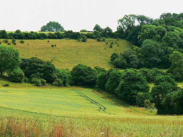 Access land, near Preston