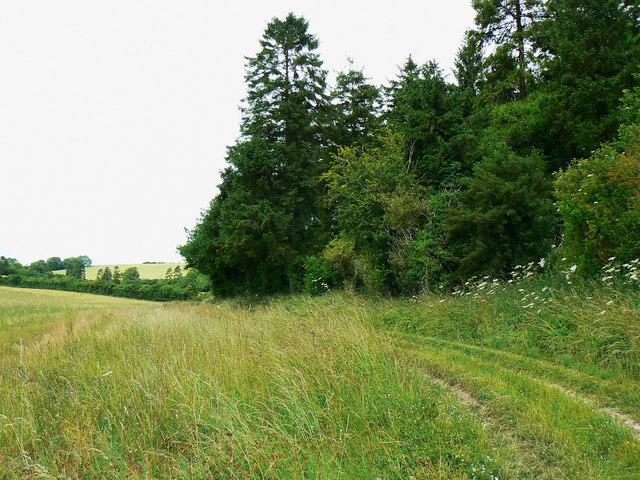 Track near Preston