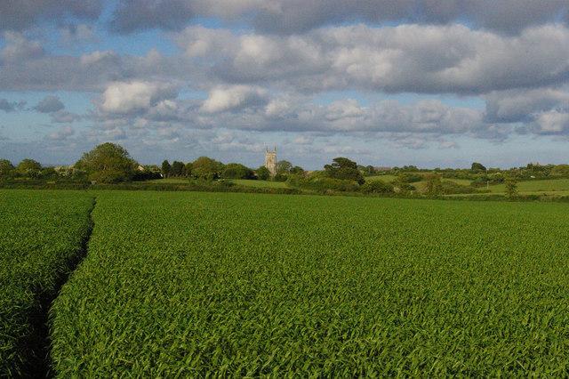 Gorran Churchtown: parish church over the fields