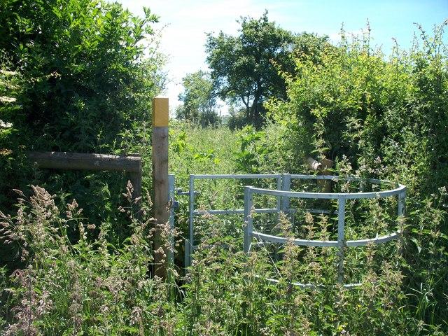 A stinging gate