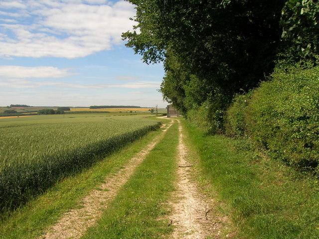 Bridleway near Squirrel Hall Farm