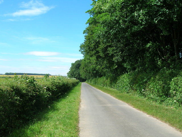 Farm road (bridleway) beside Kirby Plantation