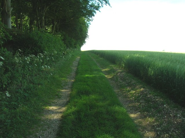Farm track beside Crook Plantation