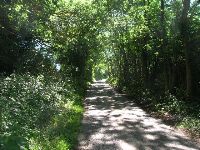 Farm track off Kirby Lane