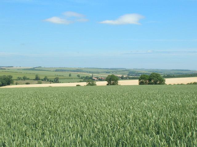 Farmland, Low Mowthorpe