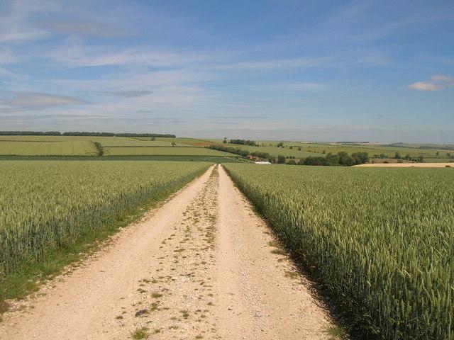 Track to Low Mowthorpe Farm
