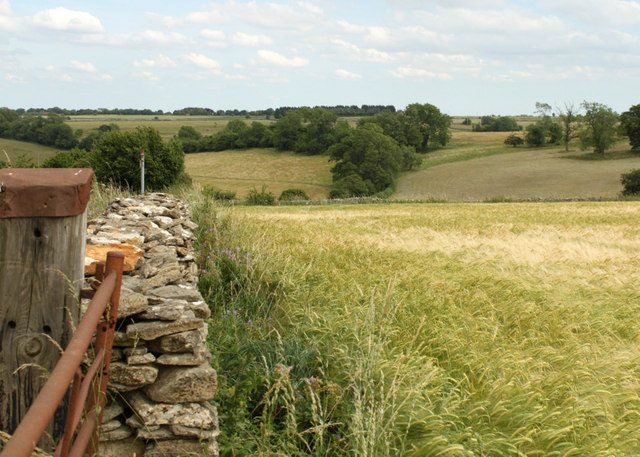 2010 : Dry Cotswold wall, wet Cotswold valley