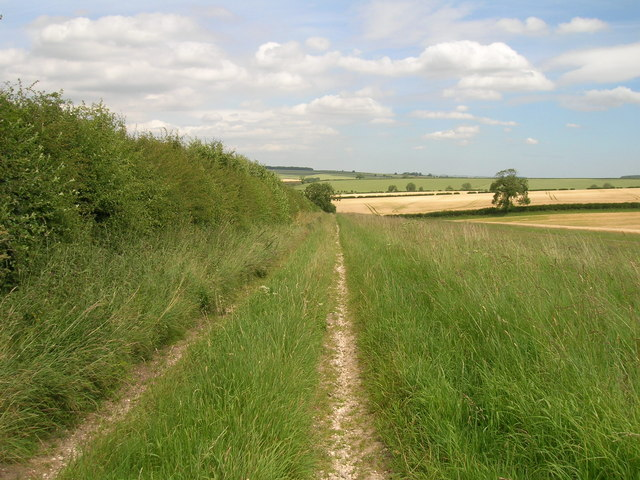 Farm track near Wharram le Street