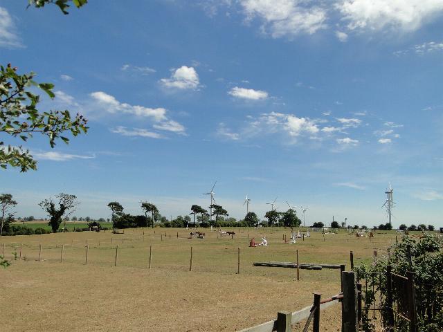 Wind Power v Horse Power