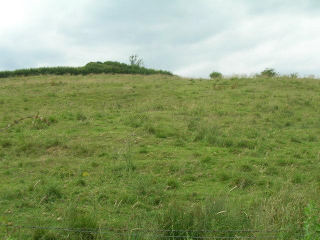 Grazing land, Wharram Grange