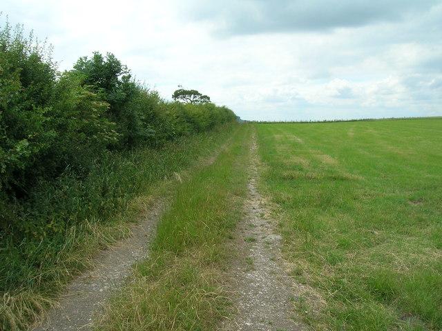 Farm track near Wharram Grange