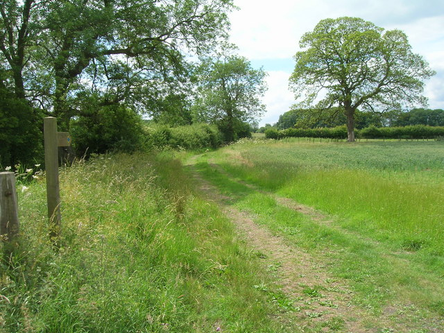 Wolds Way footpath heading west