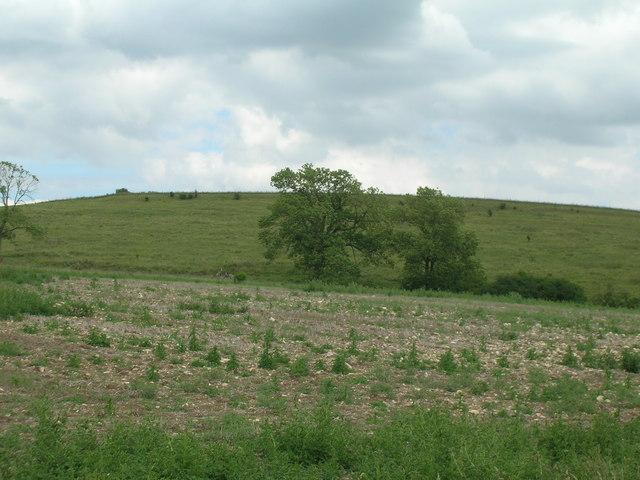 Rough farmland, Grimston Hill