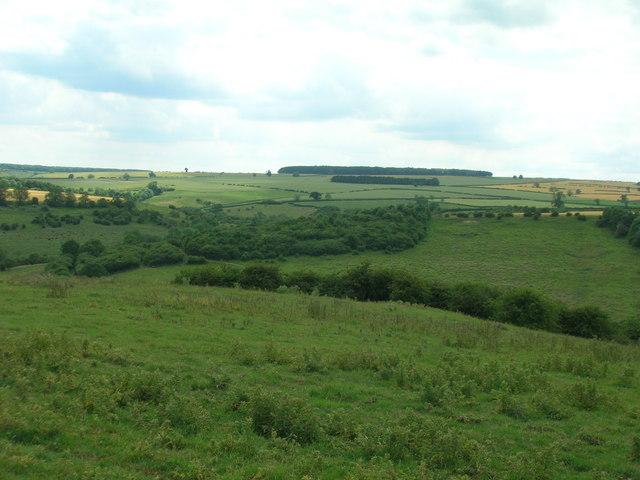 Pastureland, Cow Cliff