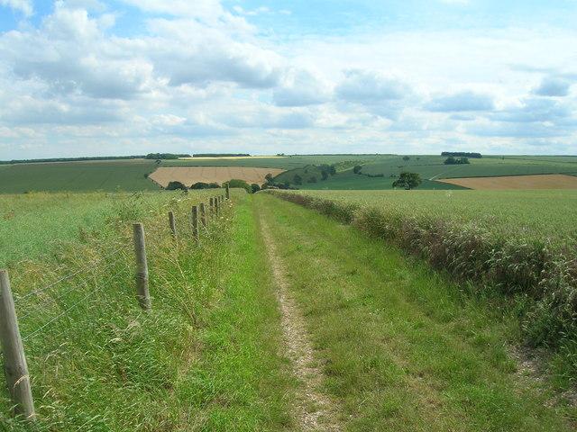 Bridleway, Mowthorpe Wold
