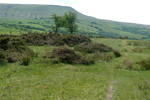 Hay Bluff from afar