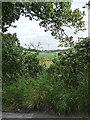 TQ3964 : Layhams Road, West Wickham (1) by Stephen Richards