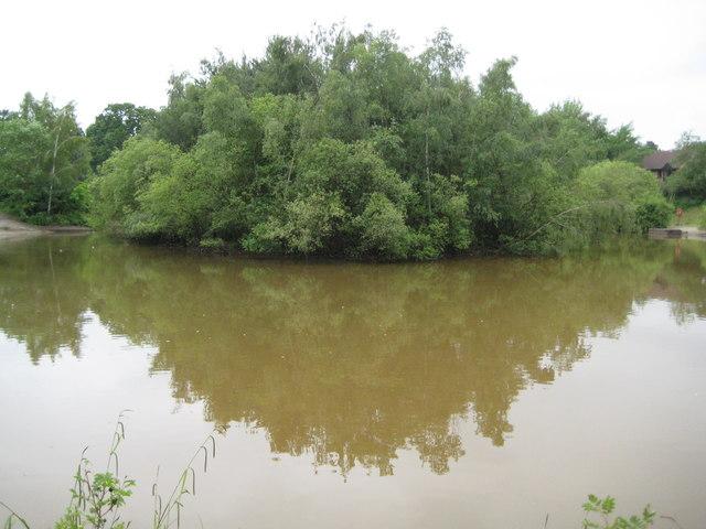 Bracknell: Savernake Pond