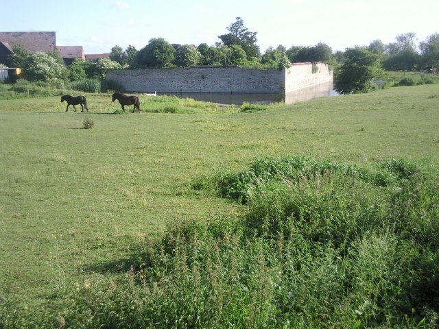 Horses at Howbury