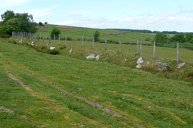 Access land on Cefn Hill