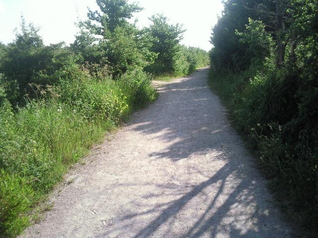 Moat Lane on a summer's morning