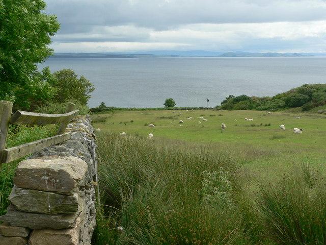 Coastal grazing near Skipness