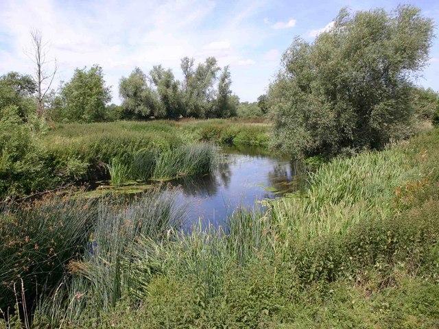 Side branch of River Soar