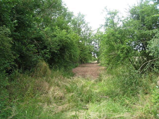 Footpath to Rundlesshill