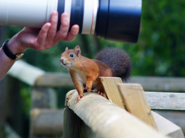 """""""That's a big lens!"""""""