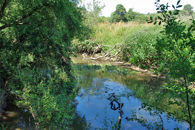 River Mole near Bury's Court