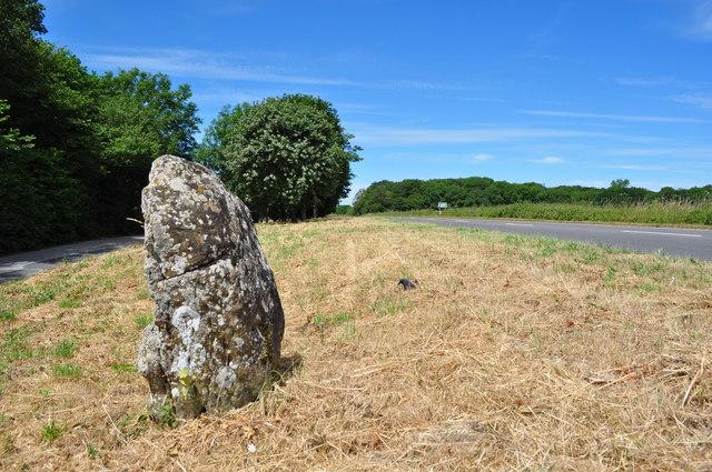 The Stockton Stone - Glacial Erratic