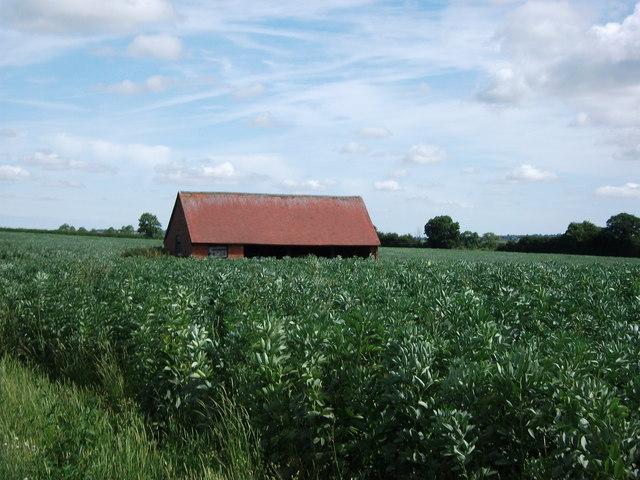 Barn near Windmill Spinney