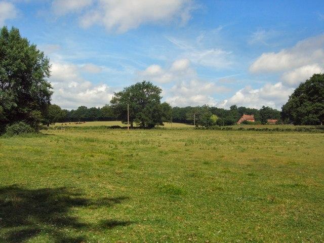 River's farm