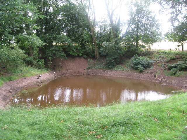 Pond near Tibberton
