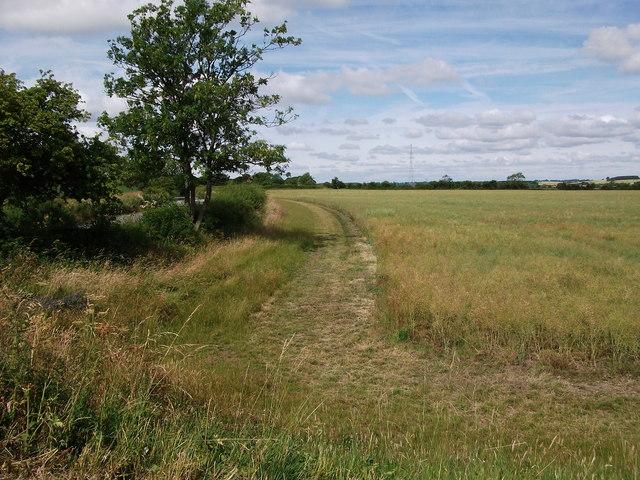 Fields near Church Farm