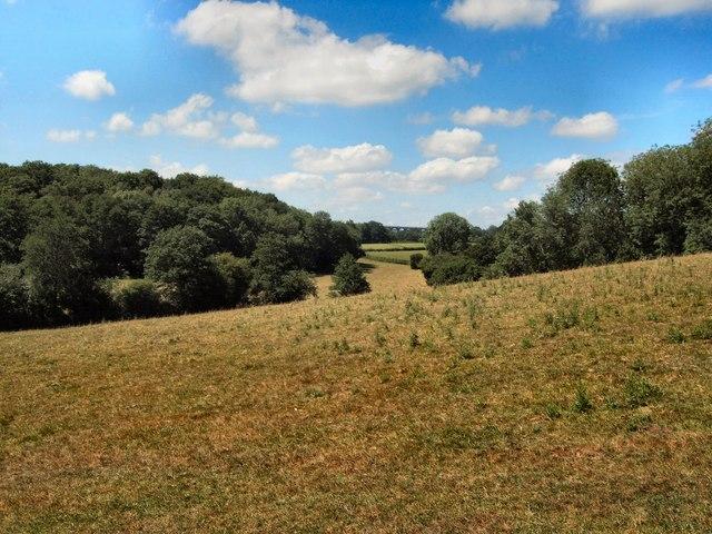 Farmland near Ardingly