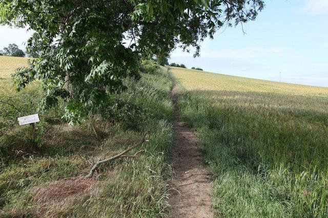 Footpath leading towards Thornton Steward Reservoir