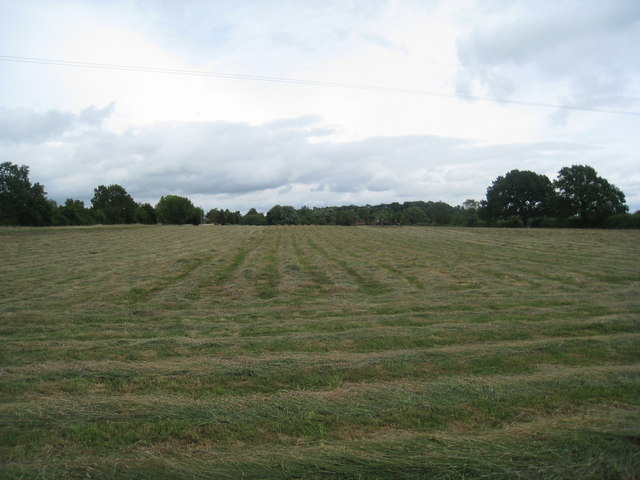 Hay drying, Corse Lawn
