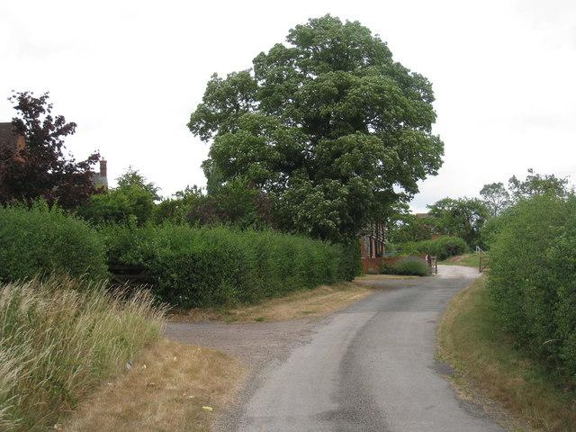 Lane at Linkend