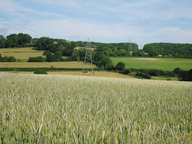 Crop Field and Power Lines