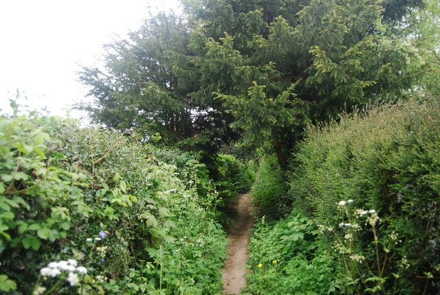 Footpath to Newick Hill
